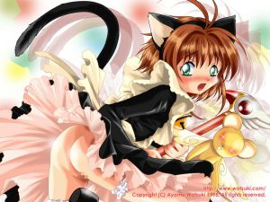 card-captor-sakura_1250785617